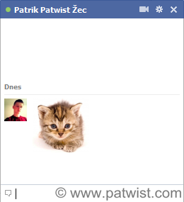 Facebook chat smiley cat